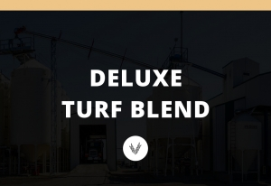 Deluxe Turf Blend