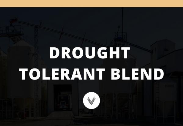 Drought Tolerant Blend