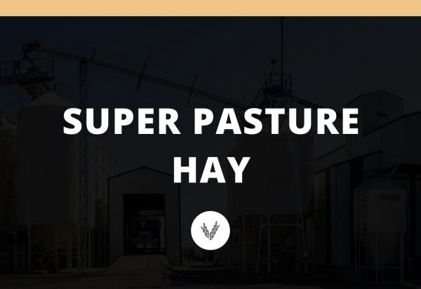 SUPER PASTURE HAY